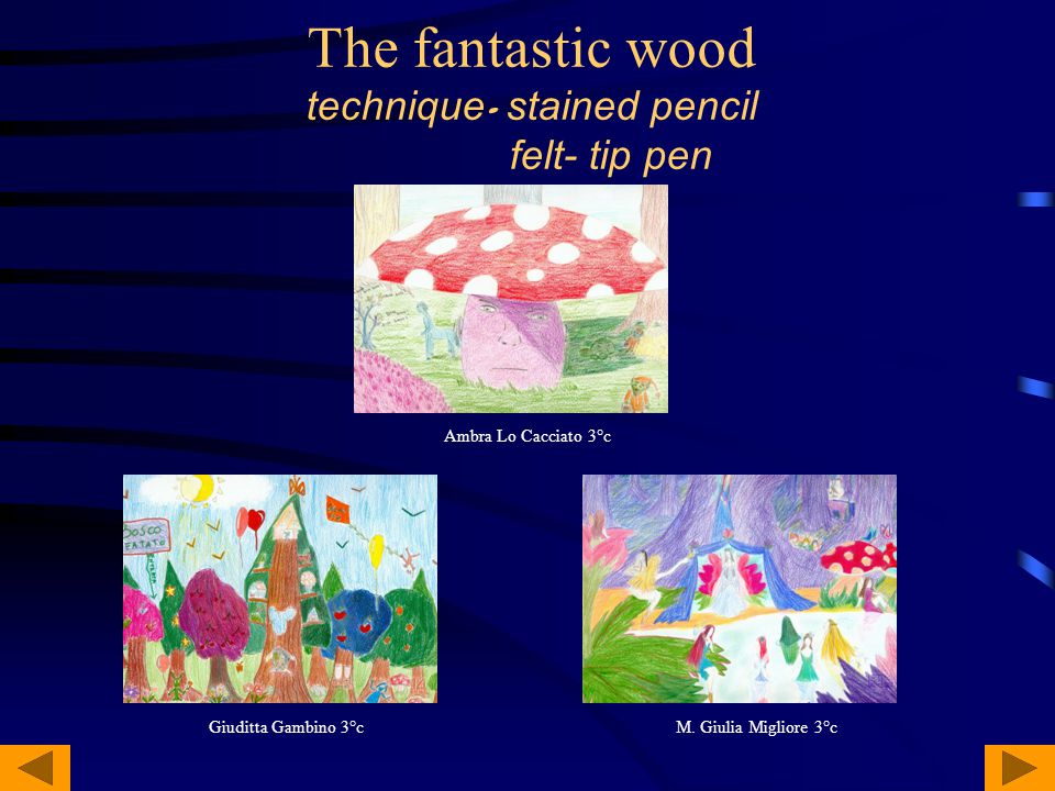 The fantastic wood technique - stained pencil felt- tip pen Ambra Lo Cacciato 3°c M.