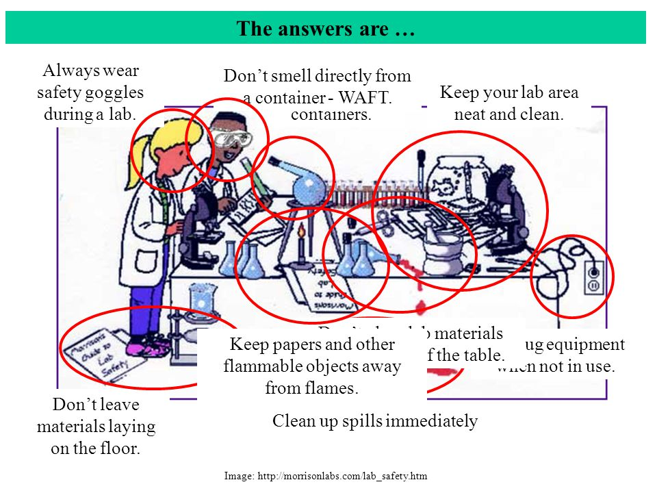 The answers are … Image: http://morrisonlabs.com/lab_safety.htm Always wear safety goggles during a lab.