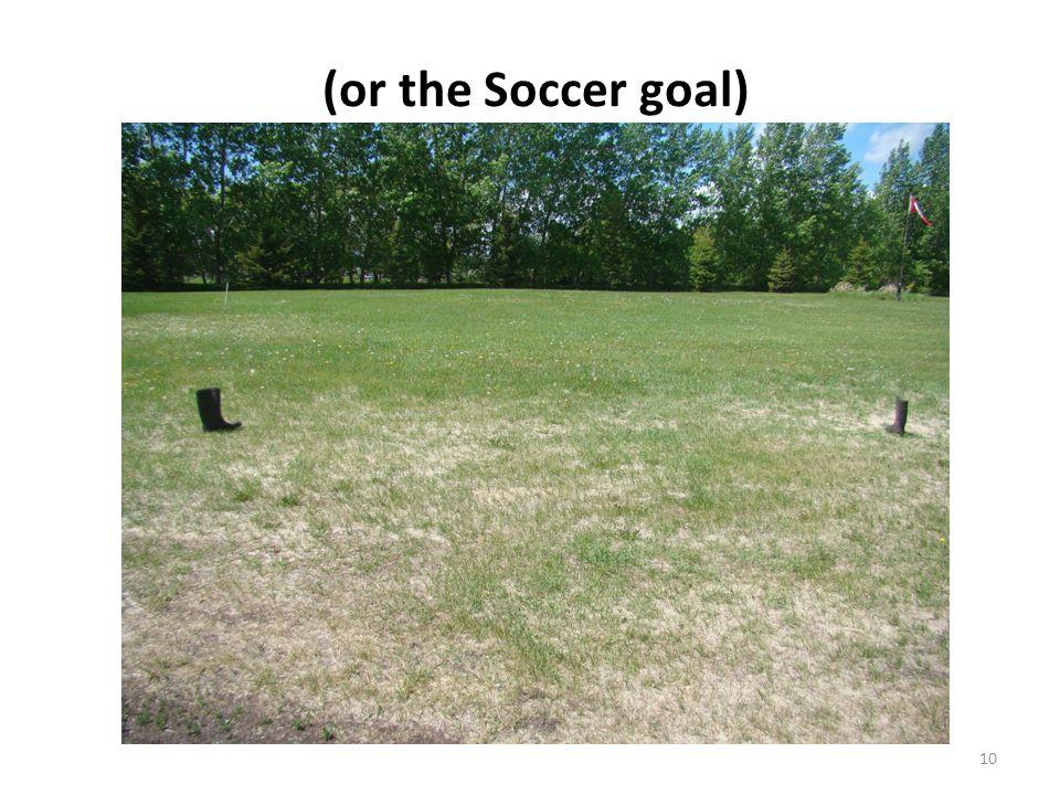 (or the Soccer goal) 10