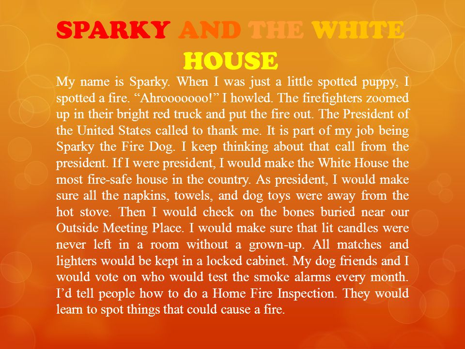 SPARKY AND THE WHITE HOUSE My name is Sparky.