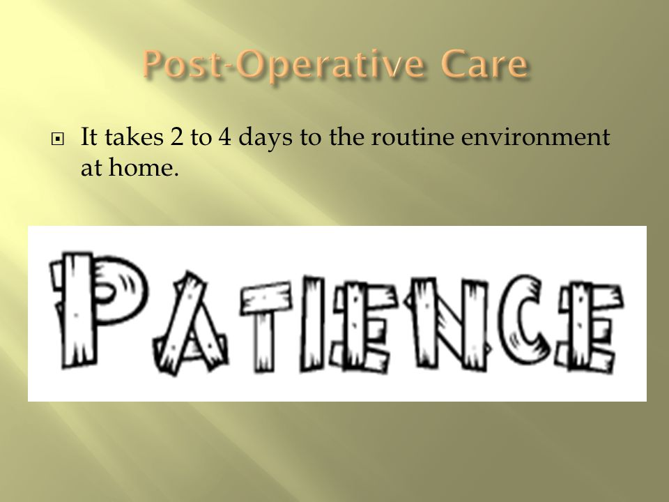  It takes 2 to 4 days to the routine environment at home.