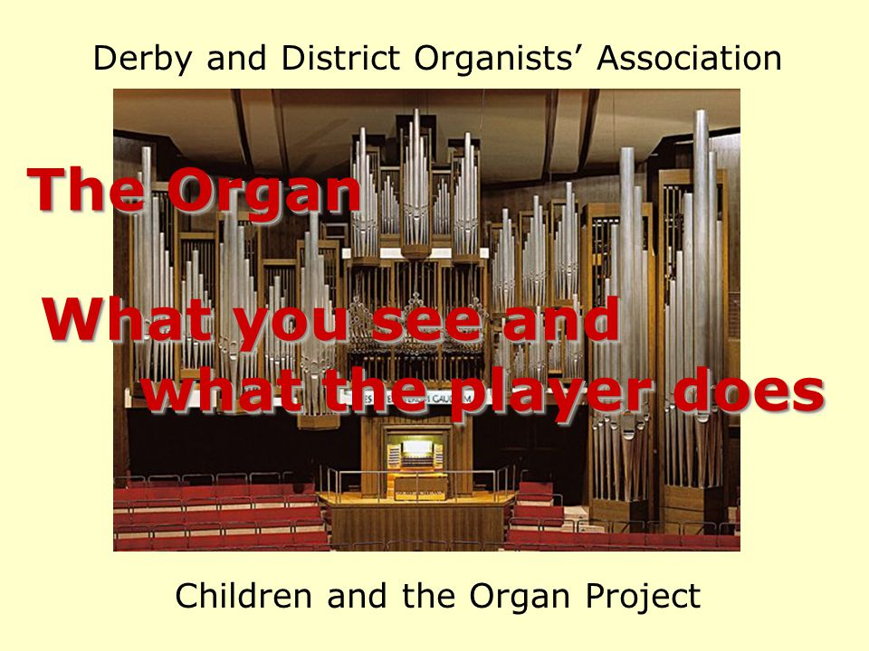 Derby and District Organists' Association Children and the Organ Project The Organ What you see and what the player does what the player does What you see and what the player does what the player does