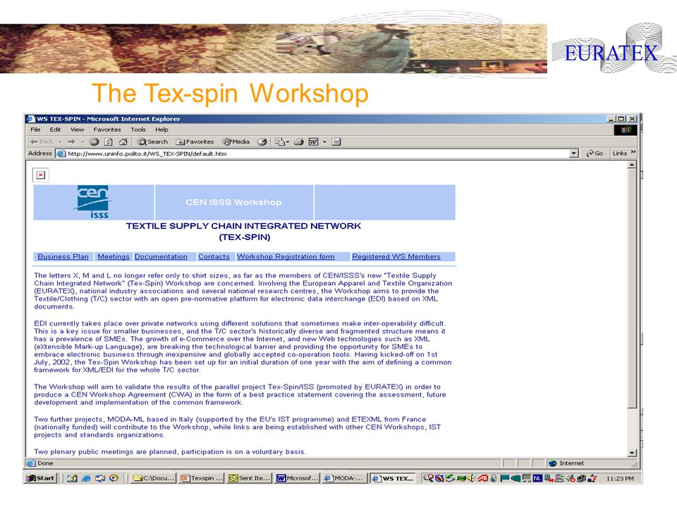 Euratex R&D Task Force Meeting, 8th of July 2003, Brussels The Tex-spin Workshop
