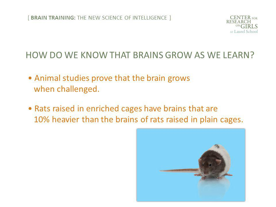 Animal studies prove that the brain grows when challenged.