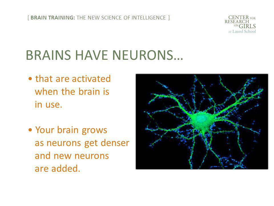 that are activated when the brain is in use.