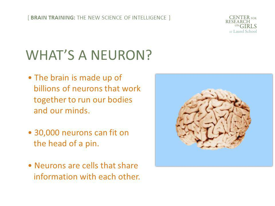 The brain is made up of billions of neurons that work together to run our bodies and our minds.