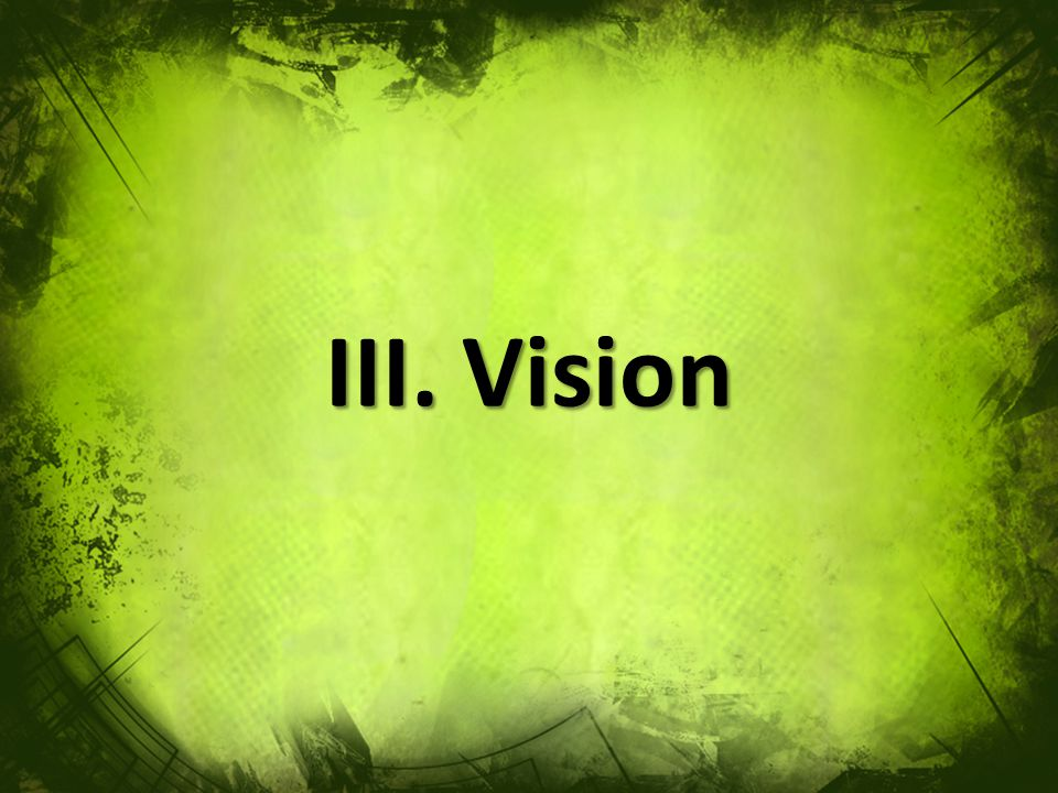 III. Vision