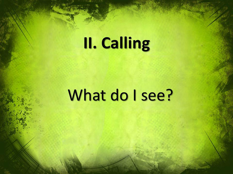 II. Calling What do I see?