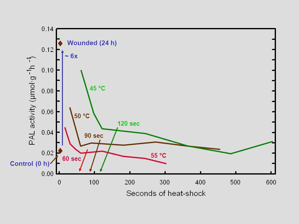 45 °C 50 °C 55 °C Wounded (24 h) Control (0 h) 120 sec 90 sec 60 sec ~ 6x