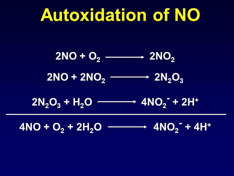 Autoxidation of NO 2NO + O 2 2NO 2 2NO + 2NO 2 2N 2 O 3 2N 2 O 3 + H 2 O 4NO 2 - + 2H + 4NO + O 2 + 2H 2 O 4NO 2 - + 4H +