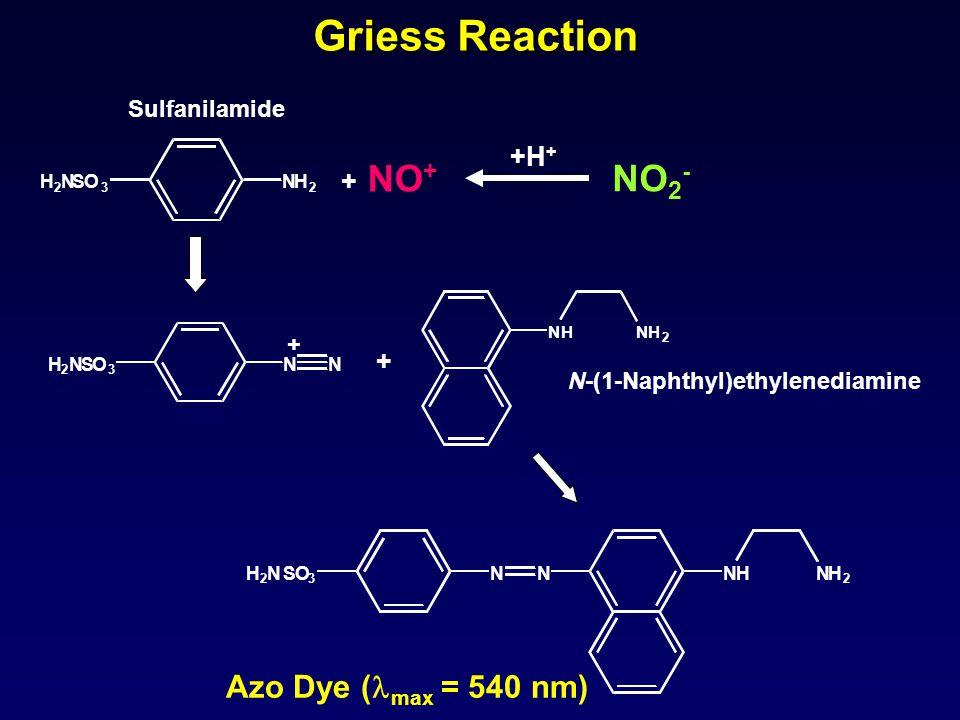 H 2 NSO 3 NN + + 2 + NO + H 2 NSO 3 NH Sulfanilamide NHNH 2 N-(1-Naphthyl)ethylenediamine Griess Reaction NHNH 2 NNH 2 N S O 3 Azo Dye ( max = 540 nm)