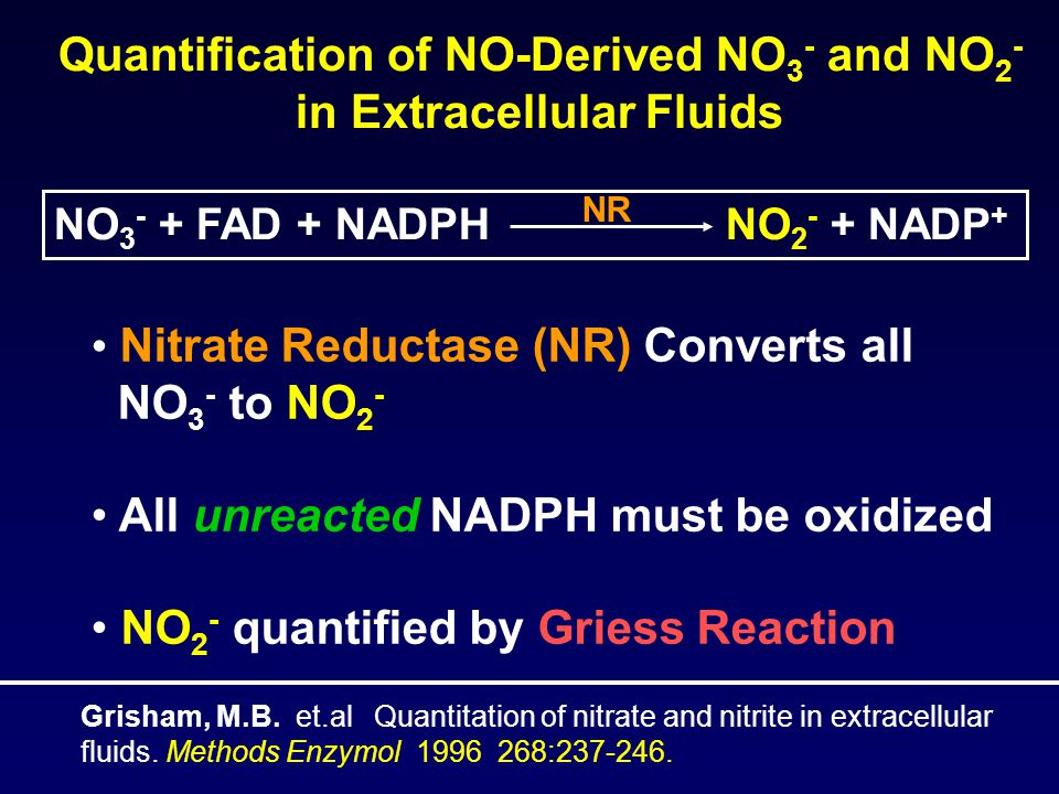 Quantification of NO-Derived NO 3 - and NO 2 - in Extracellular Fluids NO 3 - + FAD + NADPH NO 2 - + NADP + NR Nitrate Reductase (NR) Converts all NO 3 - to NO 2 - All unreacted NADPH must be oxidized NO 2 - quantified by Griess Reaction Grisham, M.B.