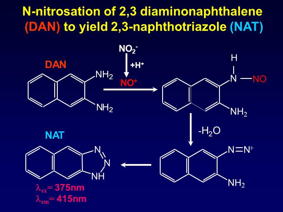 N-nitrosation of 2,3 diaminonaphthalene (DAN) to yield 2,3-naphthotriazole (NAT) NH 2 NH 2 NH N N H N NH 2 NO N NH 2 N + -H2O-H2O DAN NAT NO + ex = 37