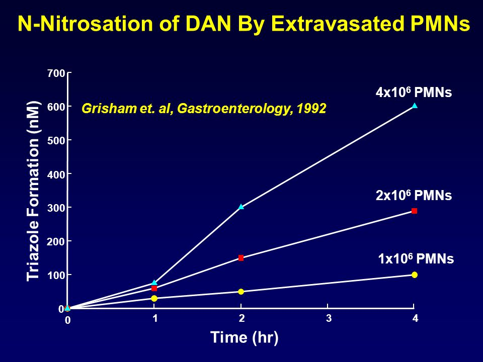 N-Nitrosation of DAN By Extravasated PMNs Time (hr) 0 1234 Triazole Formation (nM) 0 100 200 300 400 500 600 700 4x10 6 PMNs 2x10 6 PMNs 1x10 6 PMNs Grisham et.