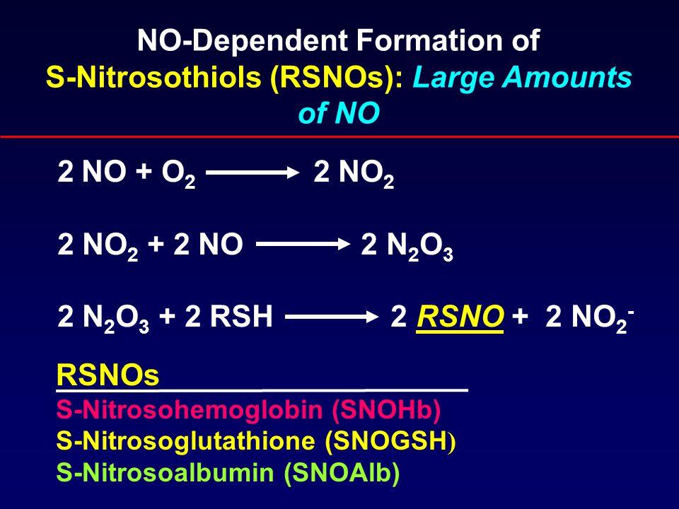 NO-Dependent Formation of S-Nitrosothiols (RSNOs): Large Amounts of NO 2 NO + O 2 2 NO 2 2 NO 2 + 2 NO 2 N 2 O 3 2 N 2 O 3 + 2 RSH 2 RSNO + 2 NO 2 - RSNOs S-Nitrosohemoglobin (SNOHb) S-Nitrosoglutathione (SNOGSH ) S-Nitrosoalbumin (SNOAlb)