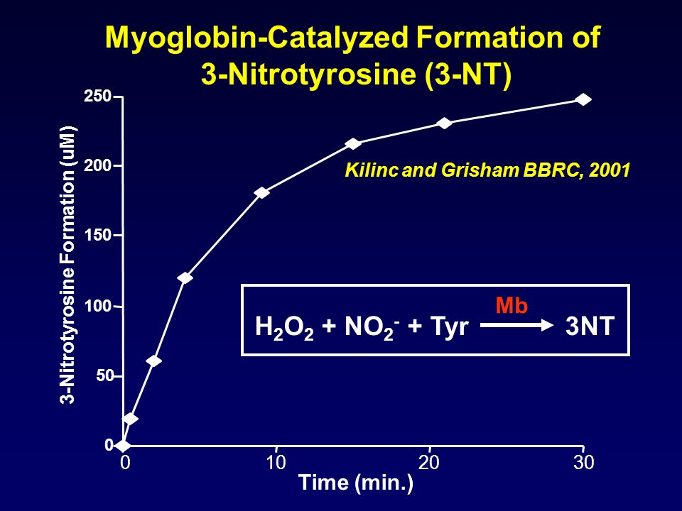 Myoglobin-Catalyzed Formation of 3-Nitrotyrosine (3-NT) 0 50 100 150 200 250 0102030 Time (min.) 3-Nitrotyrosine Formation (uM) Kilinc and Grisham BBRC, 2001 H 2 O 2 + NO 2 - + Tyr 3NT Mb