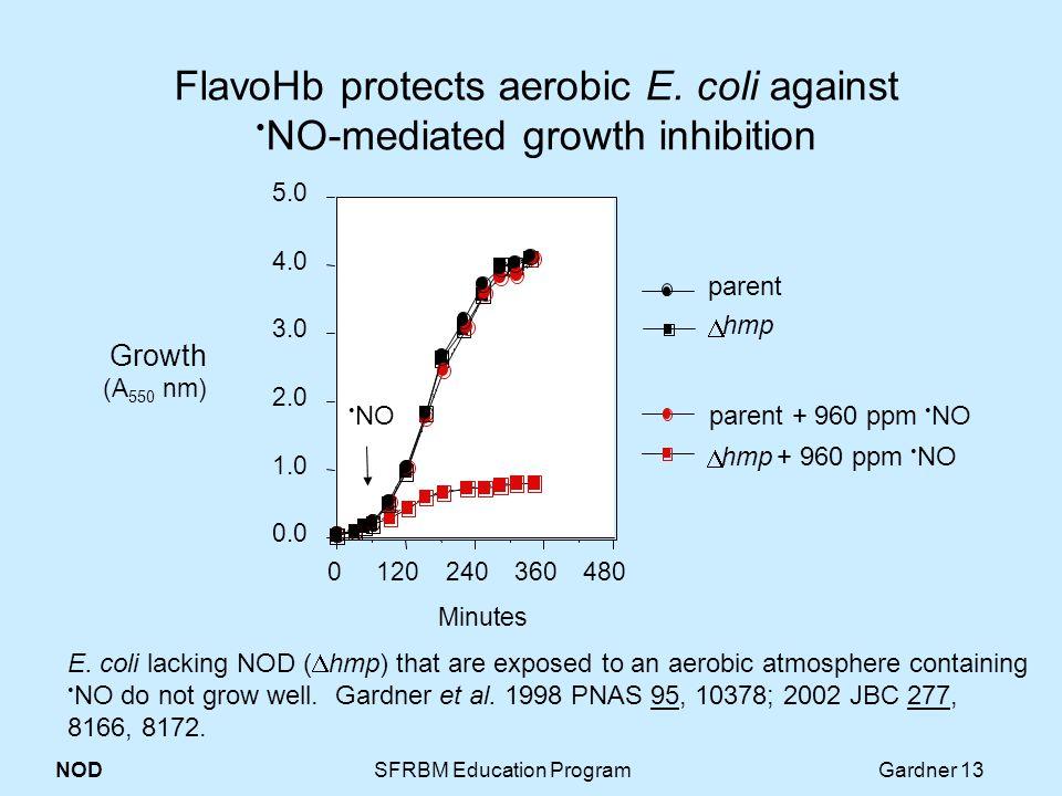 NOD SFRBM Education Program Gardner 13 FlavoHb protects aerobic E.