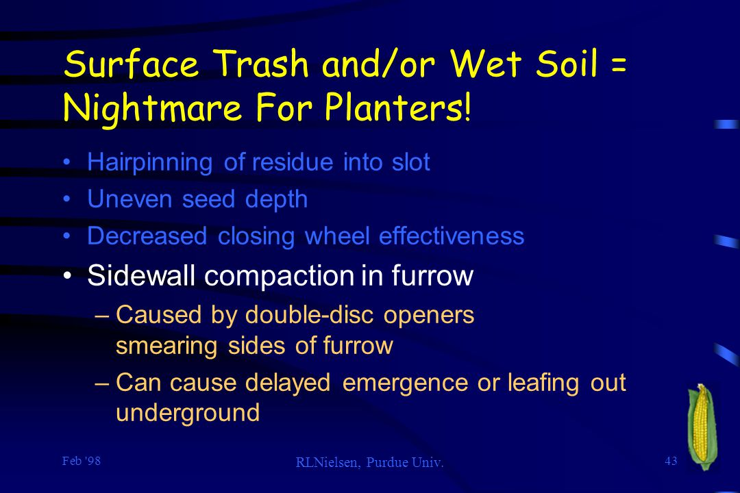 Feb '98 RLNielsen, Purdue Univ. 43 Surface Trash and/or Wet Soil = Nightmare For Planters! Hairpinning of residue into slot Uneven seed depth Decrease