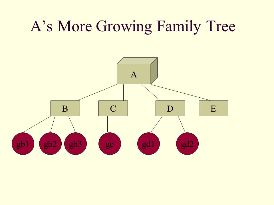 A's More Growing Family Tree A BCED gb2gb1gb3gc