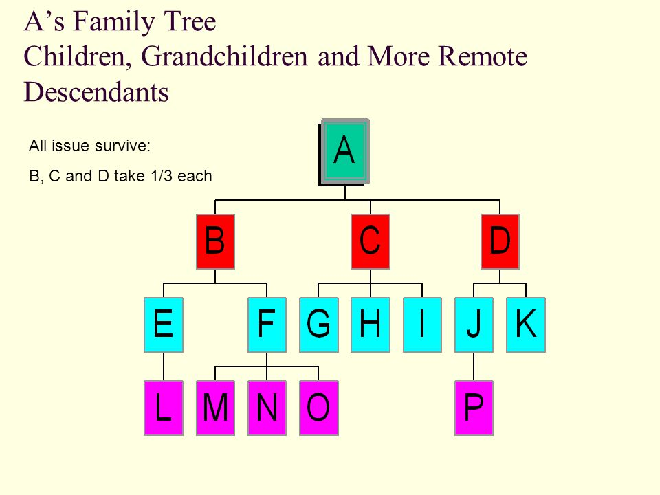A's Whole Family Tree A gb2gb1gb3gcgd1gd2ge