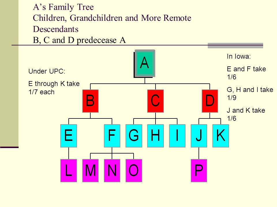 A's Family Tree Children, Grandchildren and More Remote Descendants All issue survive: B, C and D take 1/3 each