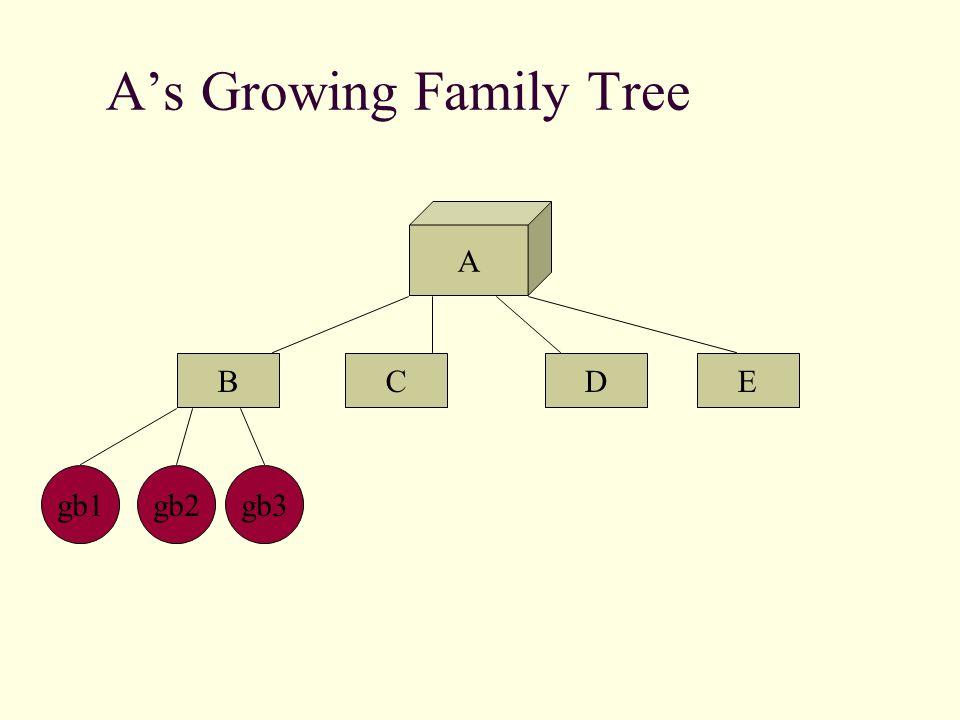 A's Family Tree A BCED