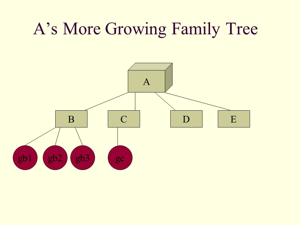 A's Growing Family Tree A BCED gb2gb1gb3