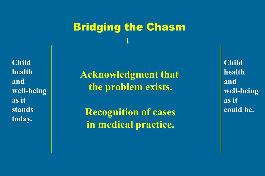Bridging the Chasm Acknowledgment that the problem exists.