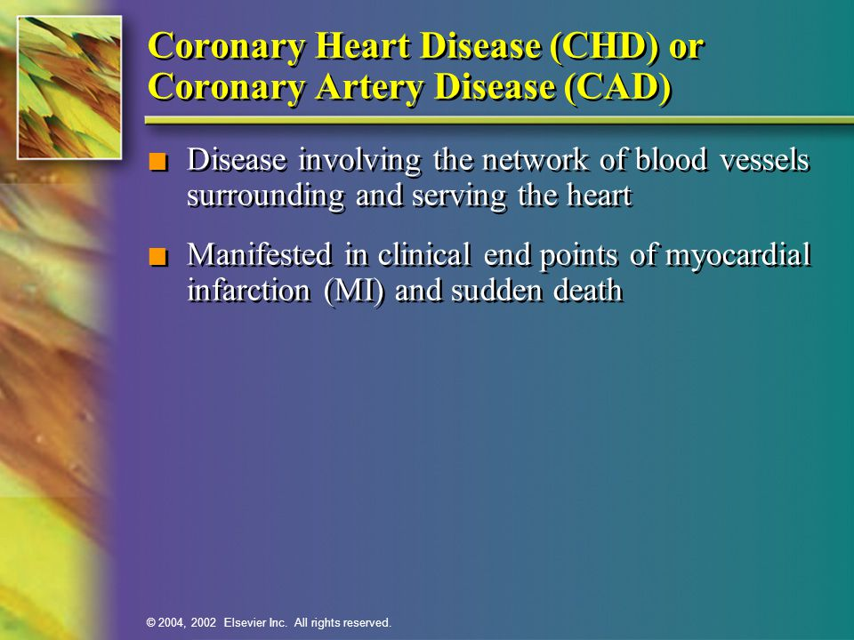 © 2004, 2002 Elsevier Inc. All rights reserved. Coronary Heart Disease (CHD) or Coronary Artery Disease (CAD) n Disease involving the network of blood