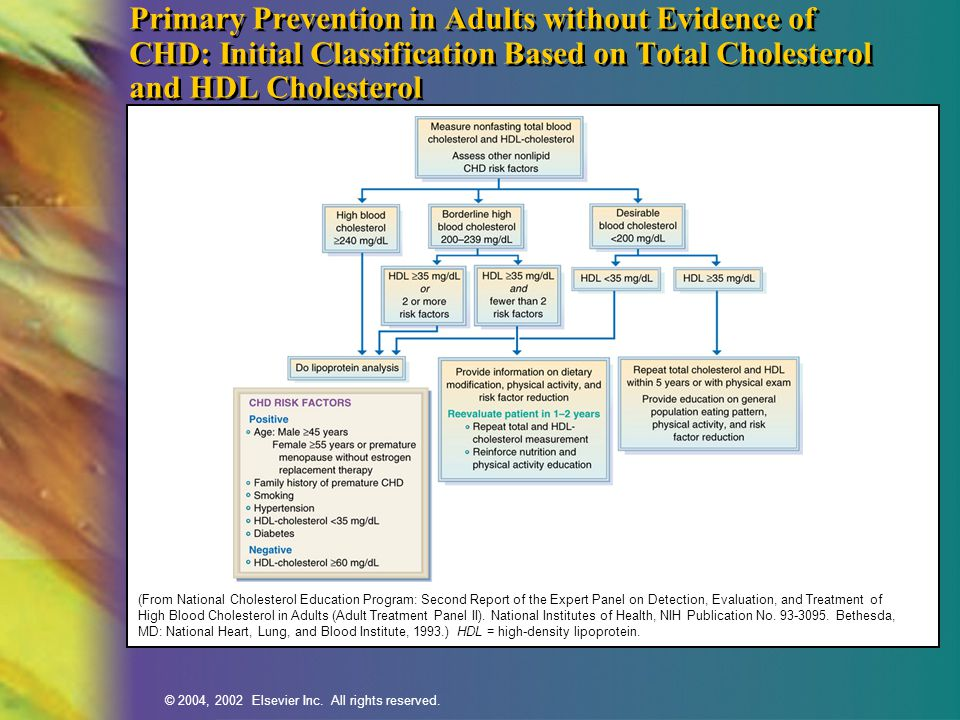 © 2004, 2002 Elsevier Inc. All rights reserved. Primary Prevention in Adults without Evidence of CHD: Initial Classification Based on Total Cholestero