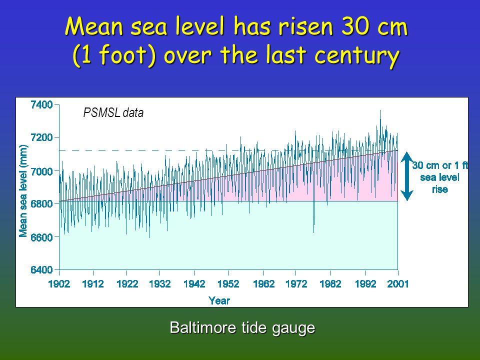 Mean sea level has risen 30 cm (1 foot) over the last century Baltimore tide gauge PSMSL data