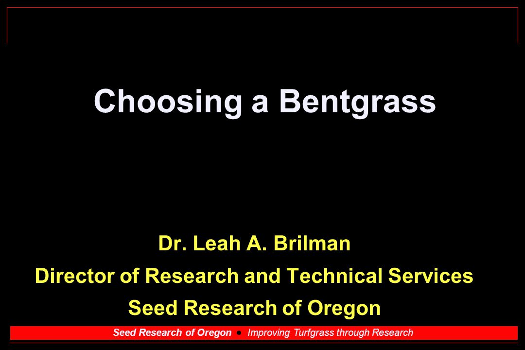 Seed Research of Oregon Improving Turfgrass through Research Choosing a Bentgrass Dr. Leah A. Brilman Director of Research and Technical Services Seed
