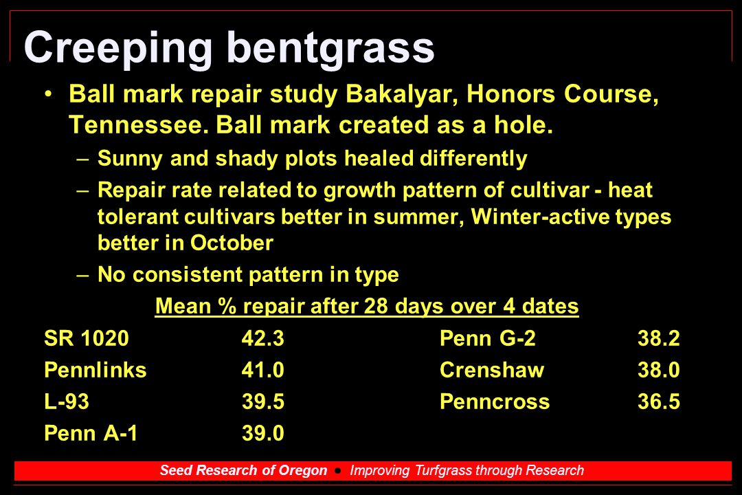 Seed Research of Oregon Improving Turfgrass through Research Creeping bentgrass Ball mark repair study Bakalyar, Honors Course, Tennessee. Ball mark c