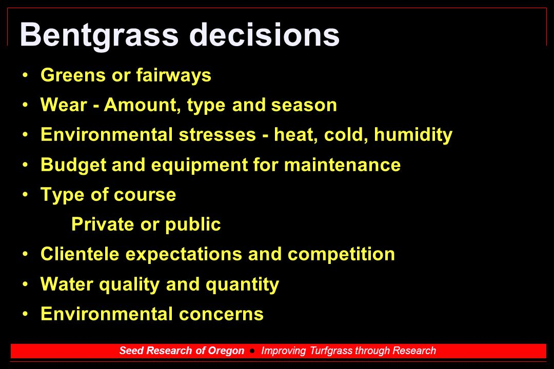 Seed Research of Oregon Improving Turfgrass through Research Bentgrass decisions Greens or fairways Wear - Amount, type and season Environmental stres