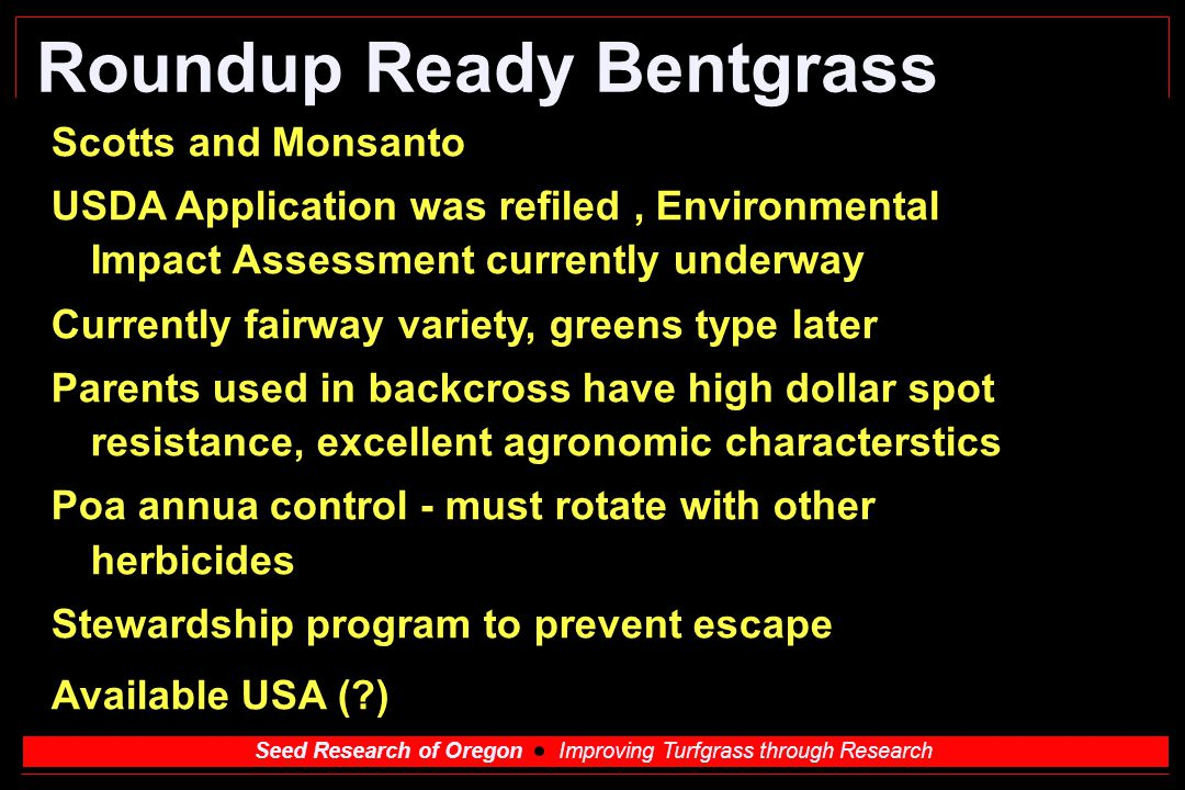 Seed Research of Oregon Improving Turfgrass through Research Roundup Ready Bentgrass Scotts and Monsanto USDA Application was refiled, Environmental I