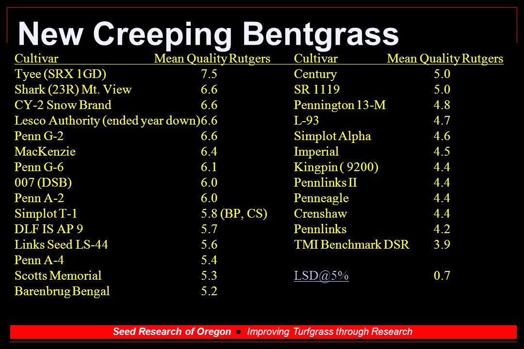 Seed Research of Oregon Improving Turfgrass through Research New Creeping Bentgrass CultivarMean Quality RutgersCultivarMean Quality Rutgers Tyee (SRX