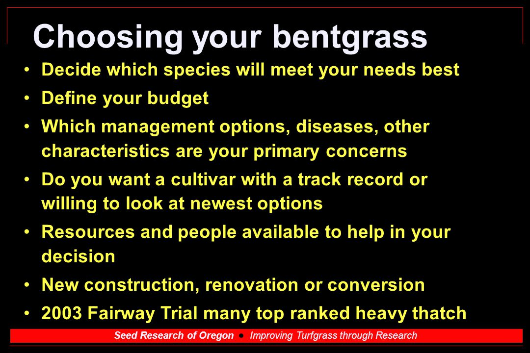 Seed Research of Oregon Improving Turfgrass through Research Choosing your bentgrass Decide which species will meet your needs best Define your budget
