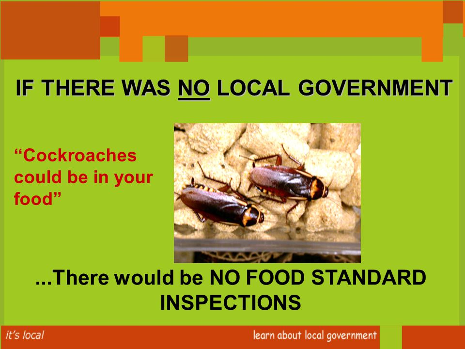 Cockroaches could be in your food ...There would be NO FOOD STANDARD INSPECTIONS IF THERE WAS NO LOCAL GOVERNMENT