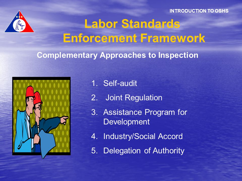 Complementary Approaches to Inspection 1.Self-audit 2. Joint Regulation 3.Assistance Program for Development 4.Industry/Social Accord 5.Delegation of