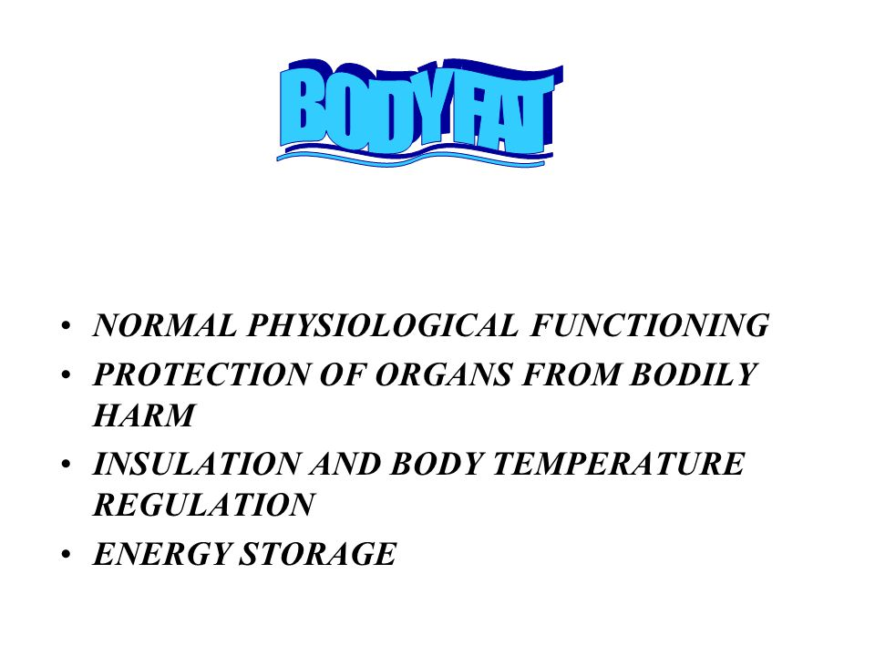 NORMAL PHYSIOLOGICAL FUNCTIONING PROTECTION OF ORGANS FROM BODILY HARM INSULATION AND BODY TEMPERATURE REGULATION ENERGY STORAGE