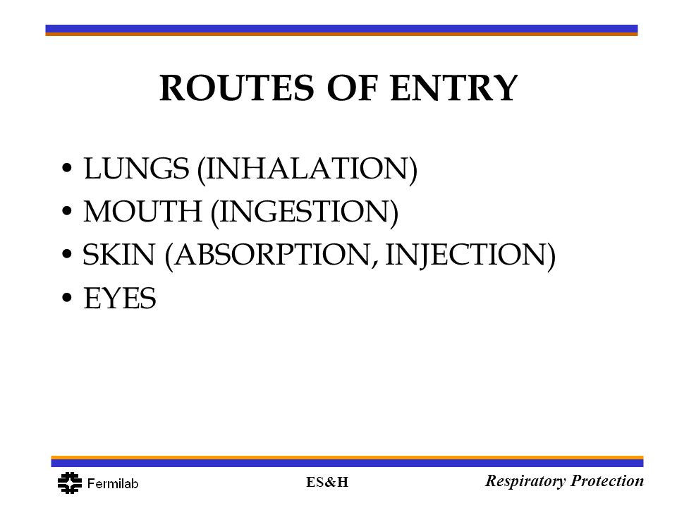 ES&H Respiratory Protection ROUTES OF ENTRY LUNGS (INHALATION) MOUTH (INGESTION) SKIN (ABSORPTION, INJECTION) EYES