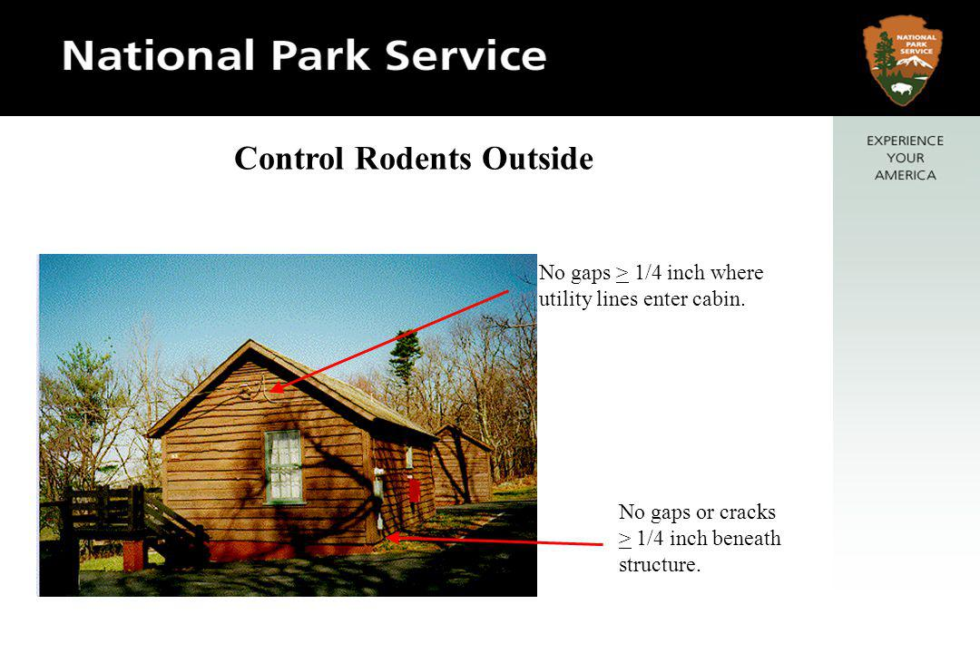 No gaps > 1/4 inch where utility lines enter cabin. No gaps or cracks > 1/4 inch beneath structure. Control Rodents Outside
