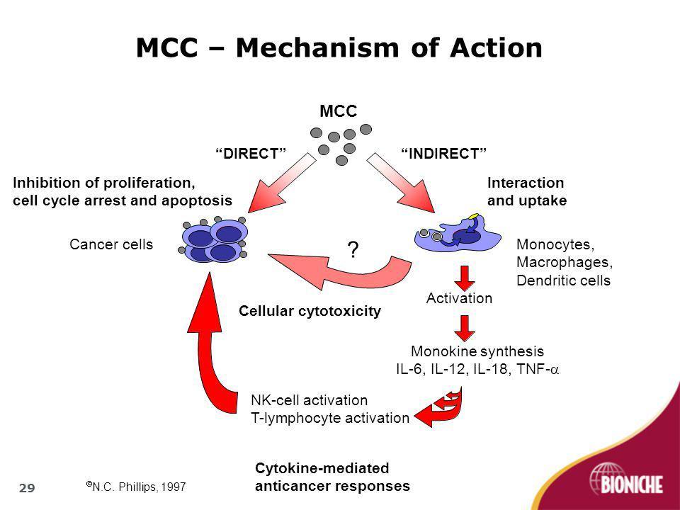 "MCC – Mechanism of Action ""INDIRECT""""DIRECT"" Monocytes, Macrophages, Dendritic cells Cancer cells Activation Monokine synthesis IL-6, IL-12, IL-18, TN"