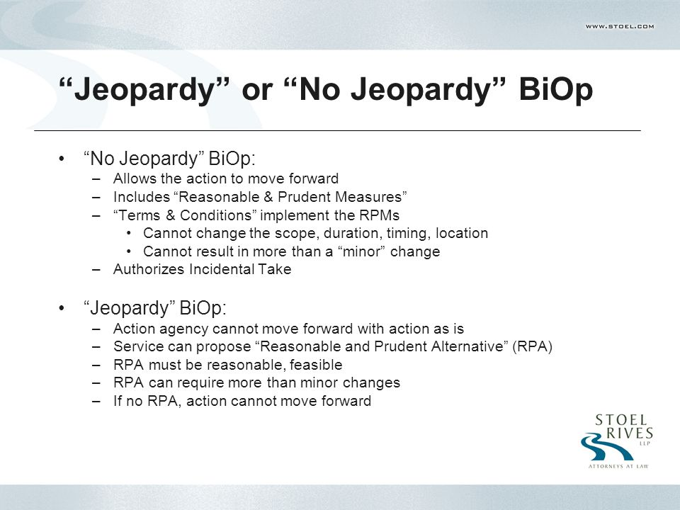 Jeopardy or No Jeopardy BiOp No Jeopardy BiOp: –Allows the action to move forward –Includes Reasonable & Prudent Measures – Terms & Conditions implement the RPMs Cannot change the scope, duration, timing, location Cannot result in more than a minor change –Authorizes Incidental Take Jeopardy BiOp: –Action agency cannot move forward with action as is –Service can propose Reasonable and Prudent Alternative (RPA) –RPA must be reasonable, feasible –RPA can require more than minor changes –If no RPA, action cannot move forward