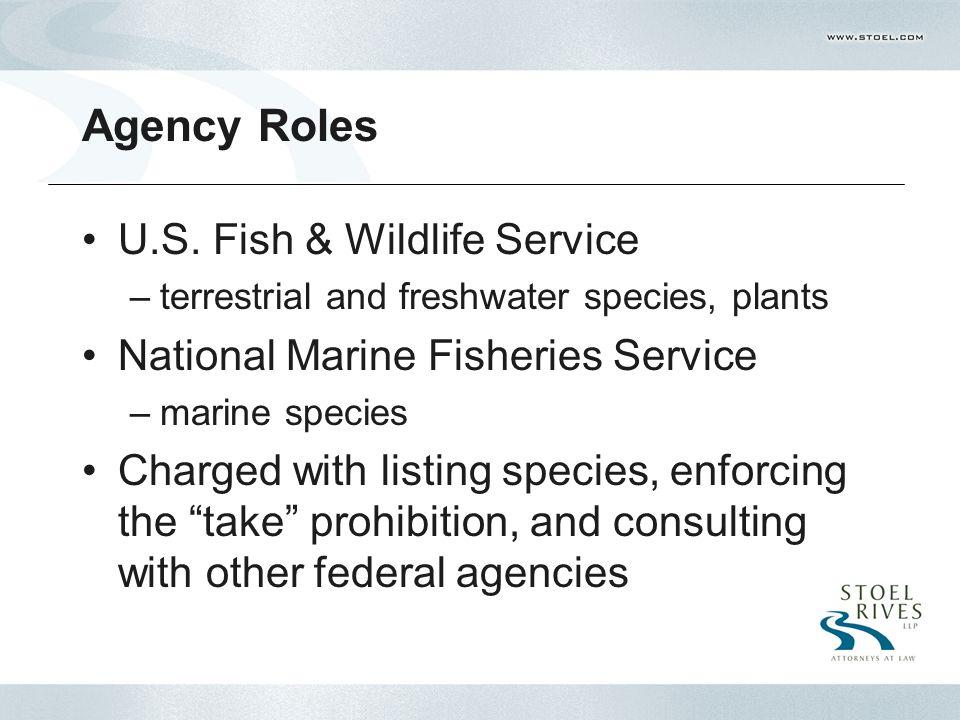 Agency Roles U.S.