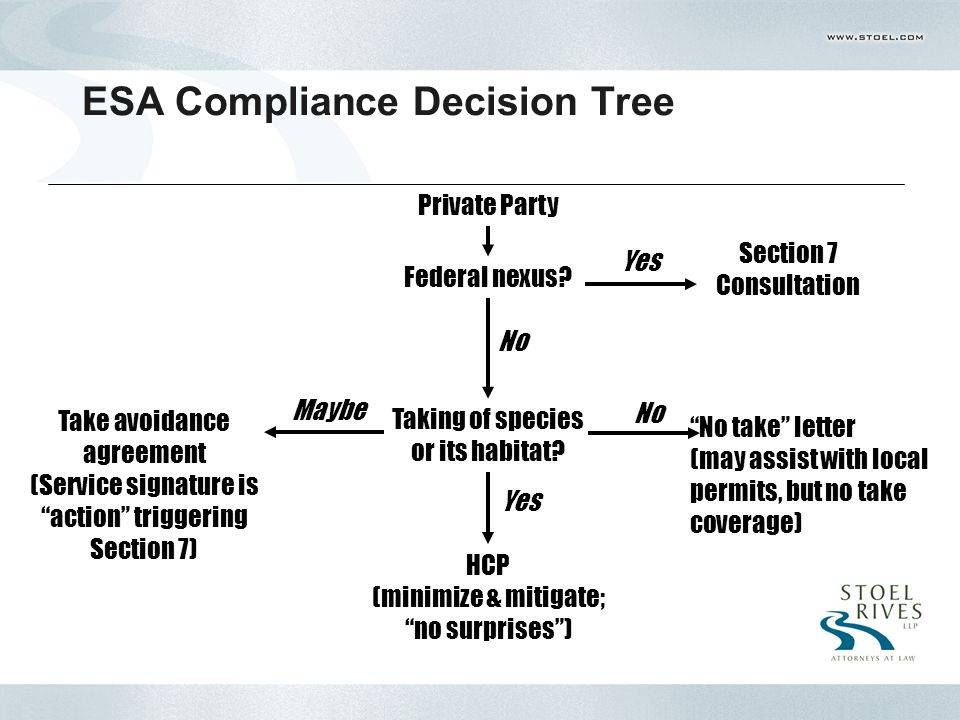 ESA Compliance Decision Tree Private Party Federal nexus.