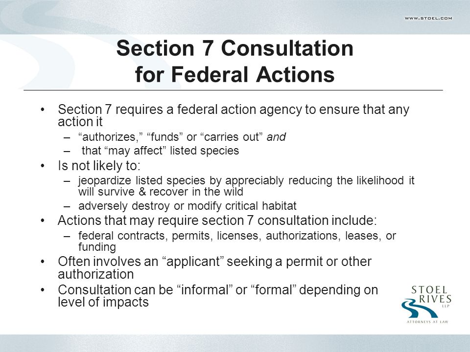 Section 7 Consultation for Federal Actions Section 7 requires a federal action agency to ensure that any action it – authorizes, funds or carries out and – that may affect listed species Is not likely to: –jeopardize listed species by appreciably reducing the likelihood it will survive & recover in the wild –adversely destroy or modify critical habitat Actions that may require section 7 consultation include: –federal contracts, permits, licenses, authorizations, leases, or funding Often involves an applicant seeking a permit or other authorization Consultation can be informal or formal depending on level of impacts