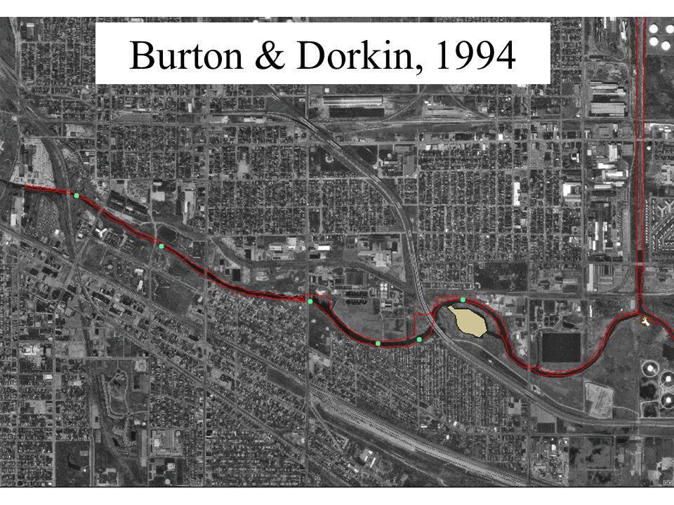 Burton & Dorkin, 1994