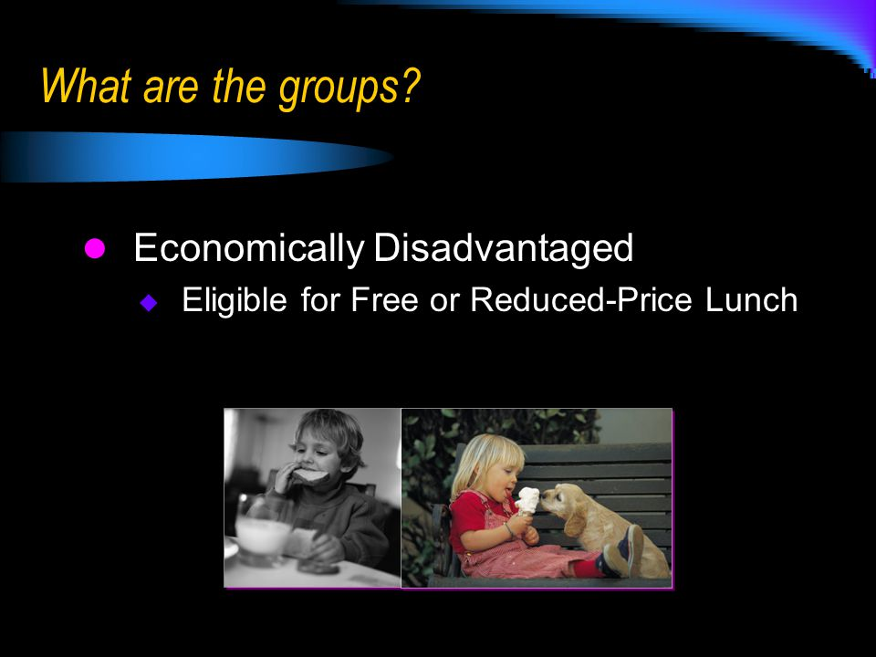 Economically Disadvantaged  Eligible for Free or Reduced-Price Lunch What are the groups