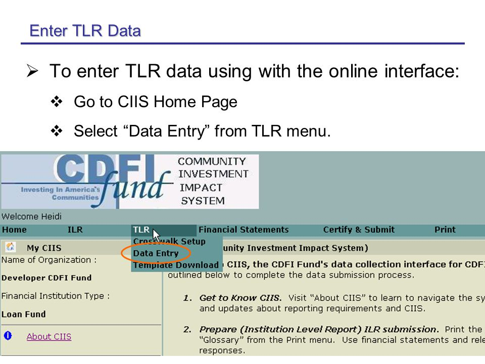 14 Enter TLR Data  To enter TLR data using with the online interface:  Go to CIIS Home Page  Select Data Entry from TLR menu.